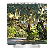 Southern Pathway Shower Curtain