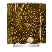 Southern Pearls Shower Curtain