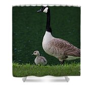 Southern Pond View Shower Curtain