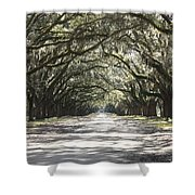 Southern Road Shower Curtain