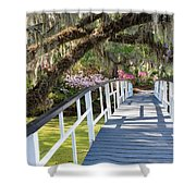 Southern Romantic Garden Magnolia Plantation Charleston South Ca Shower Curtain