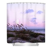 Southern Shoreline Shower Curtain