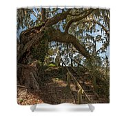 Southern Step Up Shower Curtain