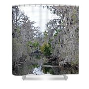 Southern Swamp Shower Curtain