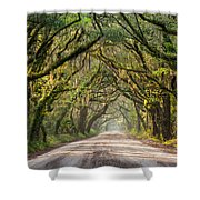 Southern Tree-lined Dirt Road Of Dreams Shower Curtain