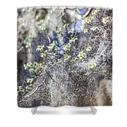 Southern Visions Shower Curtain
