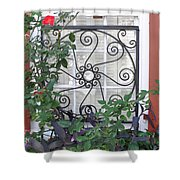 Southern Windows Shower Curtain