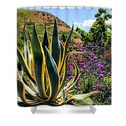 Southwest Arrangement Shower Curtain