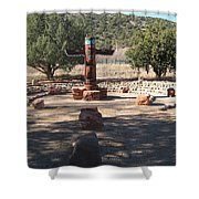Southwest Art Shower Curtain
