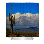 Southwest Saguaro Desert Landscape Shower Curtain