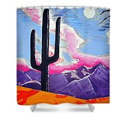 Southwest Skies 2 Shower Curtain