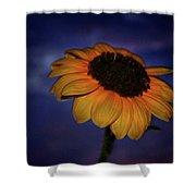 Southwest Sunflower Shower Curtain
