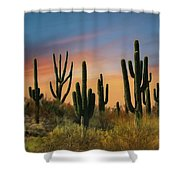 Southwest Sunset Shower Curtain