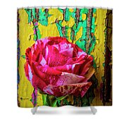 Soutime Rose Against Cracked Wall Shower Curtain