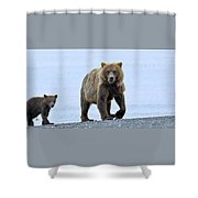 Sow And Cub Shower Curtain