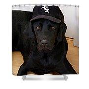 Sox Fan Shower Curtain