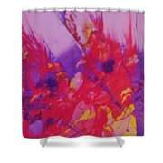 Space On Fire Shower Curtain