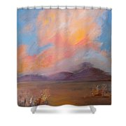 Spacious Skies Shower Curtain