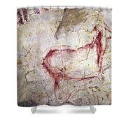 Spain: Cave Painting Shower Curtain