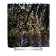 Spainsh Moss Hanging Over Pond On Middleton Place Shower Curtain