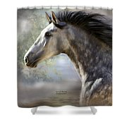 Spanish Beauty Shower Curtain