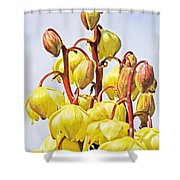 Spanish Dagger Shower Curtain
