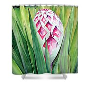 Spanish Dagger II Shower Curtain