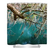 Spanish Moss And Emerald Green Water Shower Curtain