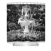 Spanish Moss Fountain With Bromeliads - Black And White Shower Curtain
