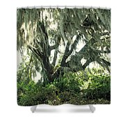 Spanish Moss In Motion Shower Curtain