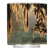 Spanish Moss In The Morning Shower Curtain