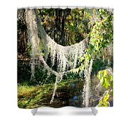 Spanish Moss Over The Swamp Shower Curtain