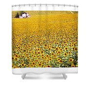 Spanish Sunflowers Shower Curtain