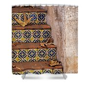 Spanish Tile Stair  Shower Curtain