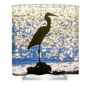 Sparkling Egret Shower Curtain