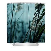 Sparkling Lights Shower Curtain