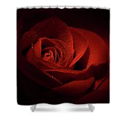 Sparkling Red Rose Shower Curtain