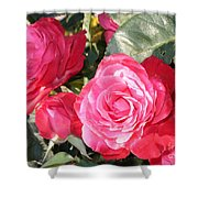 Sparkling Roses Shower Curtain