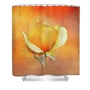 Sparkly Peach Rose Shower Curtain