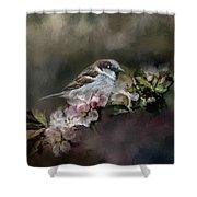 Sparrow In The Garden Shower Curtain