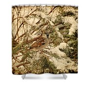 Sparrow In Winter Iv - Textured Shower Curtain