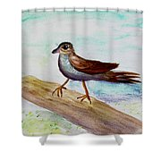 Sparrow On A Branch Shower Curtain