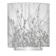 Sparsely Beautiful Shower Curtain