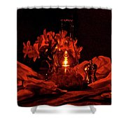 Special Occasion Shower Curtain