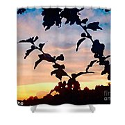 Special View Of Sunset Shower Curtain