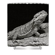 Speckled Iguana Lizard Shower Curtain