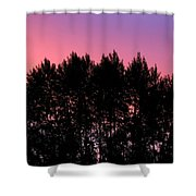 Spectacular Silhouette Shower Curtain