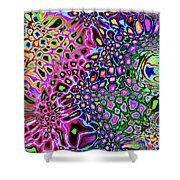 Spectrum Of Abstract Shapes Shower Curtain