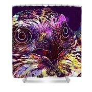 Sperber Raptor Plumage Bird Of Prey  Shower Curtain