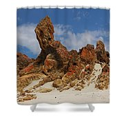Sphinx Of South Australia Shower Curtain